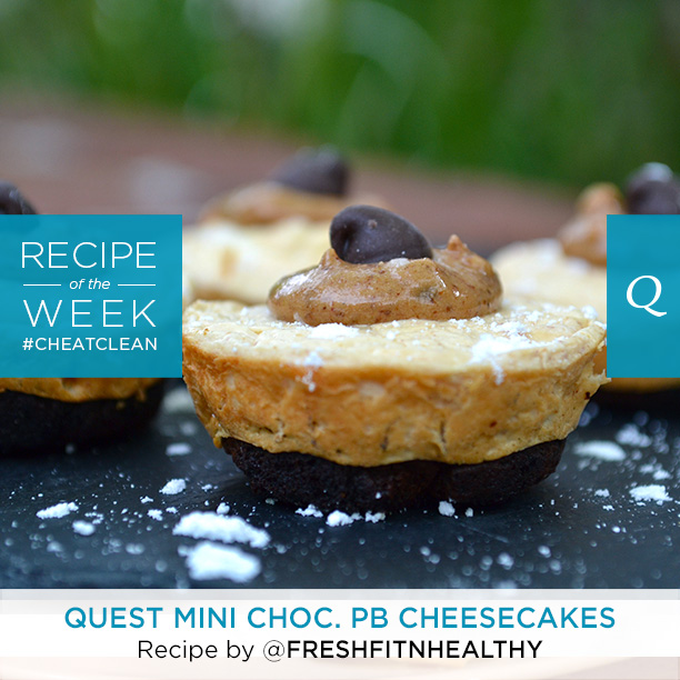Quest Mini Chocolate PB Cheesecakes