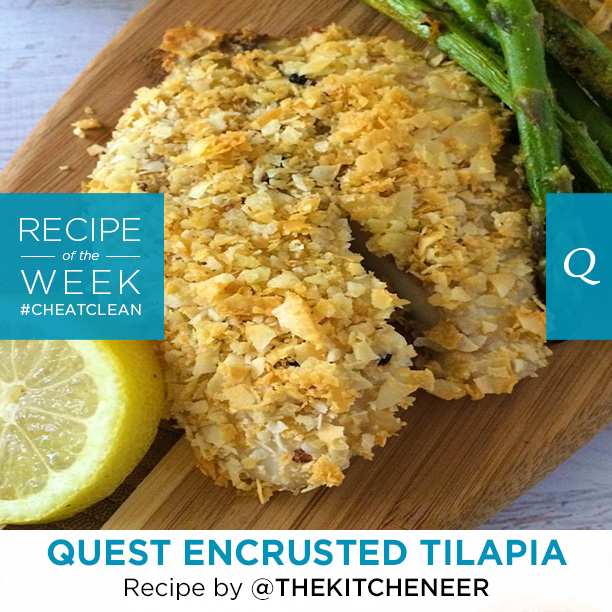 Quest Nutrition Protein Chips Encrusted Tilapia