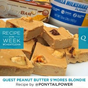 Quest Nutrition Peanut Butter S'mores Blondie | The Bloq