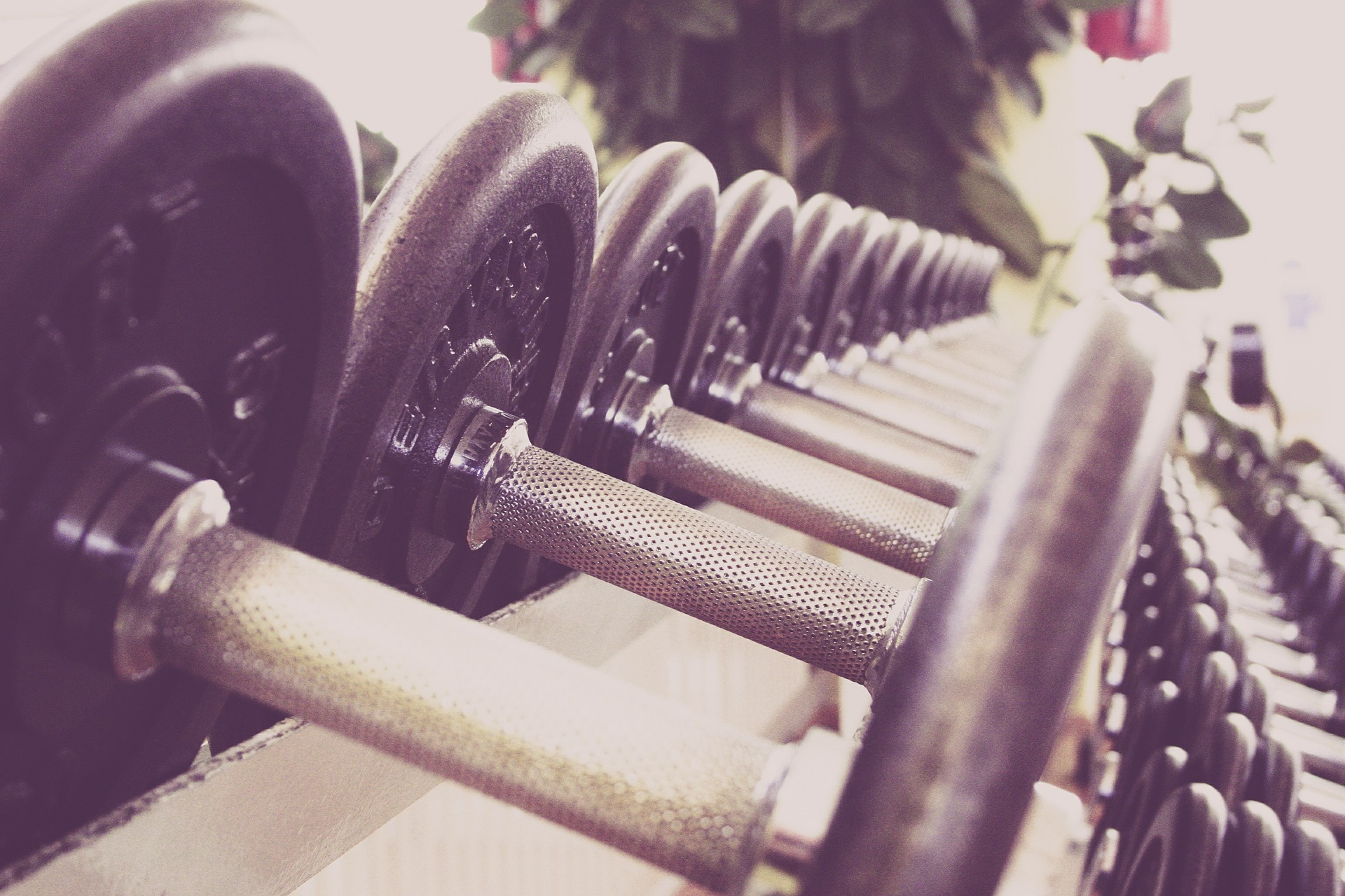 3 Reasons Why You Should Lift Weights If You're A Woman